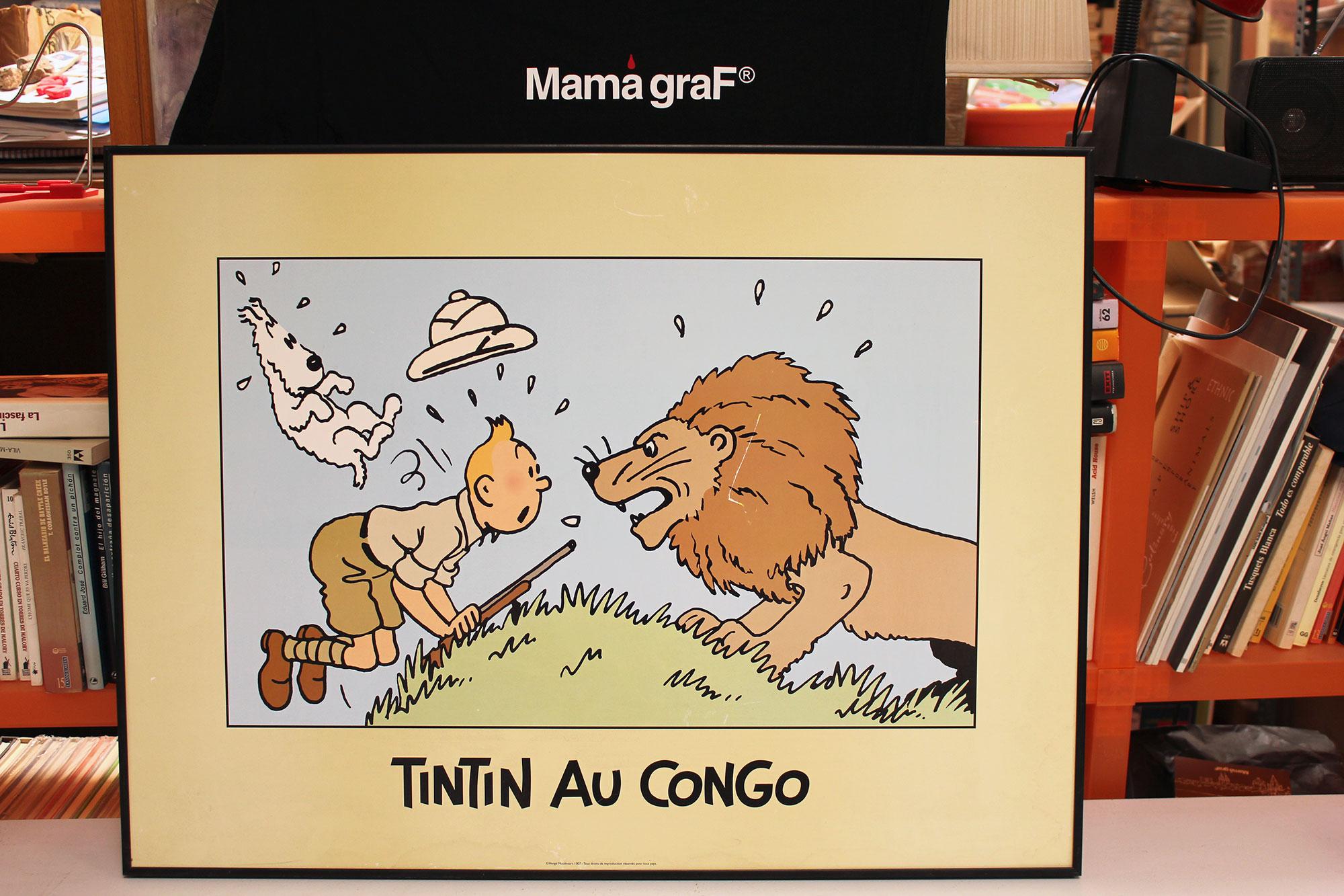 CUADRO-TINTIN-Y-LEON-FOTO-BANER-TINTIN